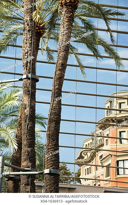 Palm garden of the Palace of the Marquis de Santa Isabel, 1882-87 reflected in the new department within the Government of Catalonia