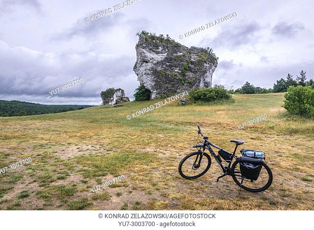 Large outlier rock next to castle in Mirow village, Polish Jura region in Silesian Voivodeship of southern Poland