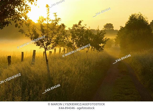 Landscape, near Braunschweig, Lower Saxony, Germany