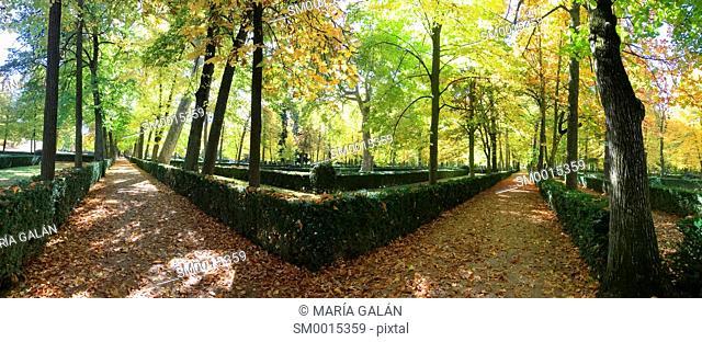 La Isla gardens in Autumn, panoramic view. Aranjuez, Madrid province, Spain