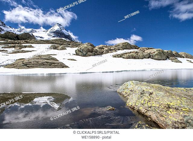 View of Lake Campagneda completely frozen with Pizzo Scalino in the background Valmalenco, Valtellina Lombardy Italy Europe
