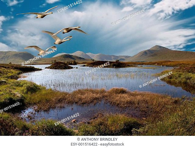 Flight over Rannoch Moor