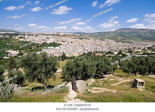 Fez Cityscape
