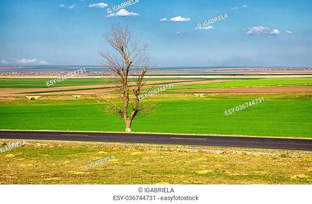 Spring landscape with Golovita lake in the distance, near Baia, Tulcea County, Romania
