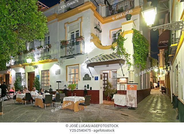 Santa Cruz Quarter, Doña Elvira Square Typical restaurant, Seville, Region of Andalusia, Spain, Europe