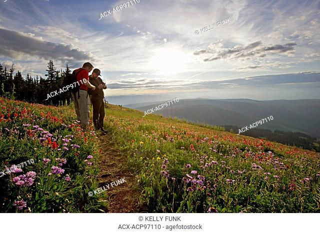 A pair of hikers takes time to enjoy the sunrise at Sun Peaks Resort, east of Kamloops, Thompson Okanagan region of British Columbia, Canada