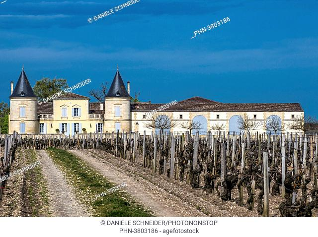 France, Gironde, Medoc, Saint-Estephe, Chateau Lilian Ladouys, AOC Saint-Estephe