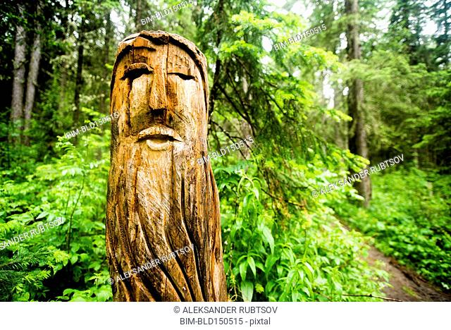 Close up of carved totem pole near forest path