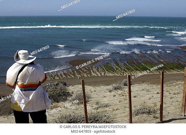 Valdes peninsula. Argentina