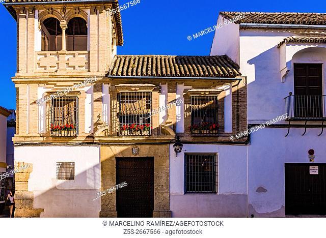 Palatial homes. Córdoba, Andalusia, Spain, Europe