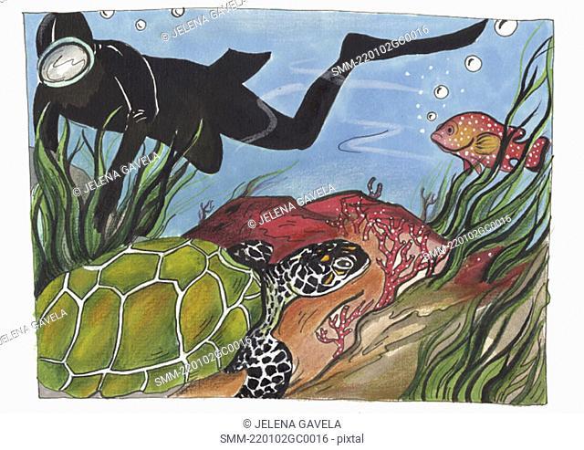 Scuba diver swimming alongside a sea turtle and fish