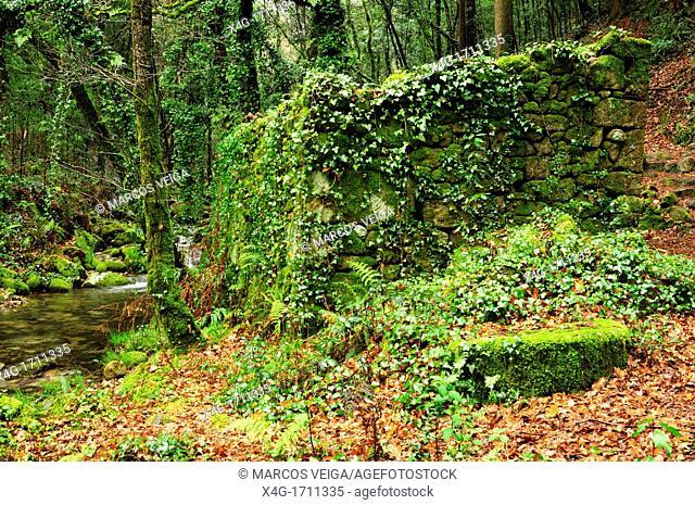 Ancient watermill in Rio da Fraga, Moaña, Pontevedra, Galicia, Spain
