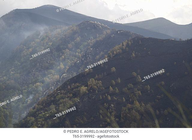 Lugo. Forestry fire. The high temperatures, the drought, and the strong wind (Ophelia), causes many forests of Galicia to burn