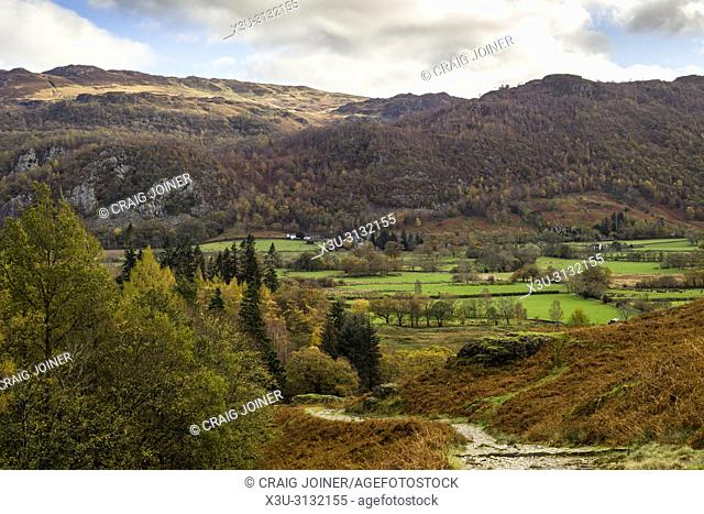 Borrowdale valley with Ashness Fell beyond in the Lake District National Park, Cumbria, England