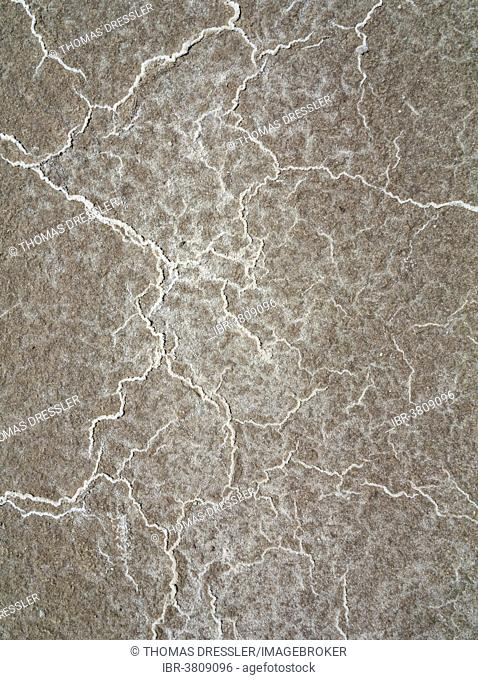 Detailed view of salt deposits on the salt marshes, central Death Valley, Death Valley National Park, California, USA