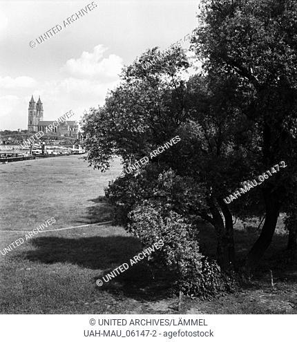Aue mit dem Mageburger Dom in der Ferne, Deutschland 1930er Jahre. Landscape with the Magdeburg cathedral, Germany 1930s