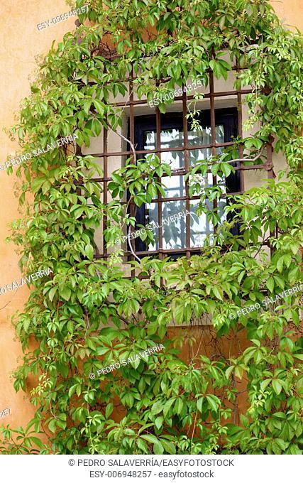 Gated window in Cuenca, Castilla La Mancha, Spain