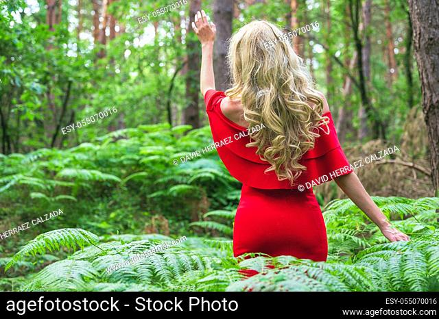 Back view of a Beautiful blonde girl in a chic red dress touching a fern in the fairy forest. Atmosphere fantastic. . High quality photo