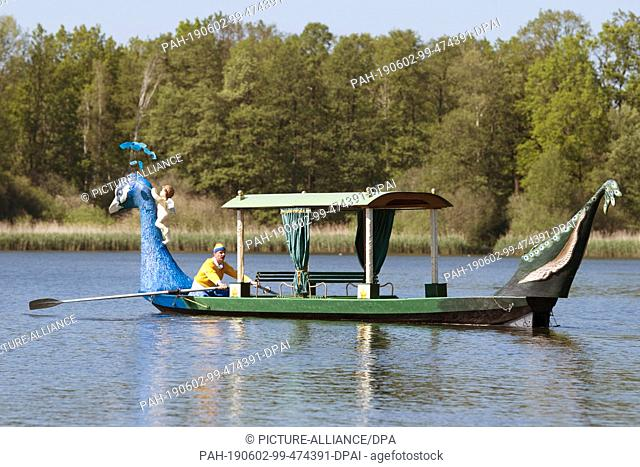 18 May 2019, Saxony, Moritzburg: The gondolier Jens Friebel sits on the Dippelsdorfer pond in his gondola, a converted Spreewald barge