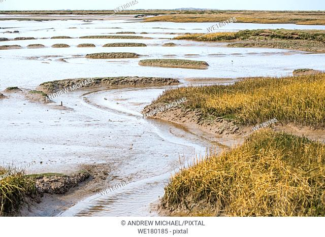 Views of mudflat at low tide from Norfolk Coast path National Trail near Barnham Overy Staithe, East Anglia, England, UK