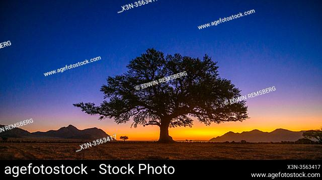 Sunset at the Nambtib Biosphere Reserve , Namibia
