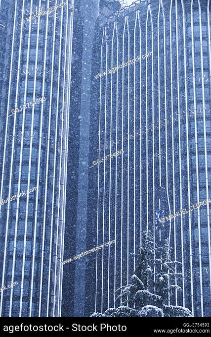 Trees under snowfall at Paseo de la Castellana after Storm Filomena brought intense snow on January 8, 2021 in Madrid, Spain