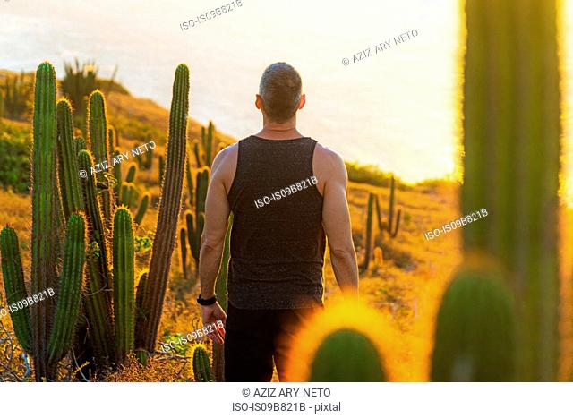 Man relaxing standing, looking at view, surrounded by cacti, Jericoacoara National Park, Ceara, Brazil
