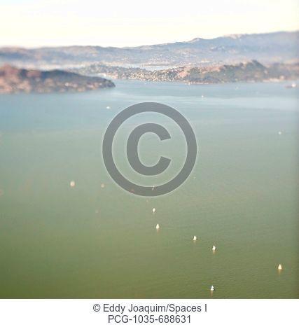 San Francisco Bay with Sailboats