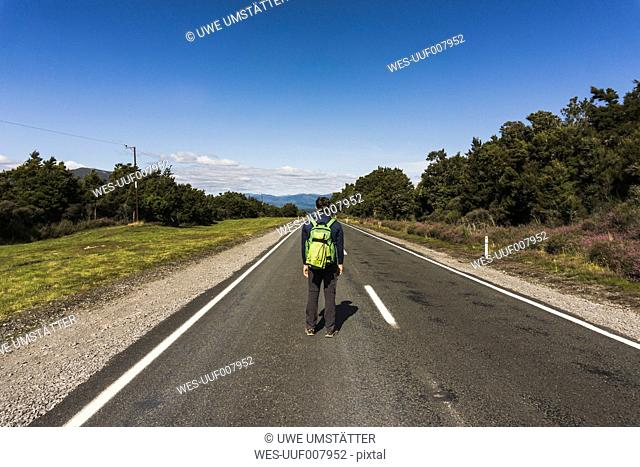 New Zealand, Tongariro National Park, back view of hiker with backpack standing on country road