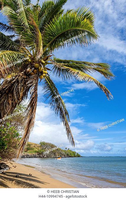USA, Hawaii, Molokai, palm beach