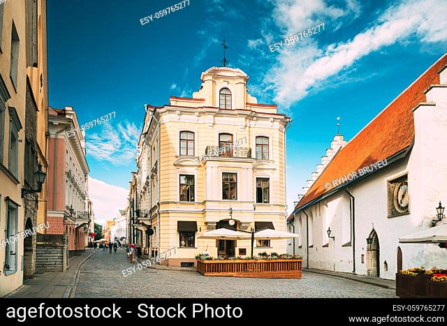 Tallinn, Estonia. Museum Of Marzipan Near Town Hall Square. Exhibition Of Museum Tells History Of Delicacy From Moment Of Its Appearance In Estonia Until Today