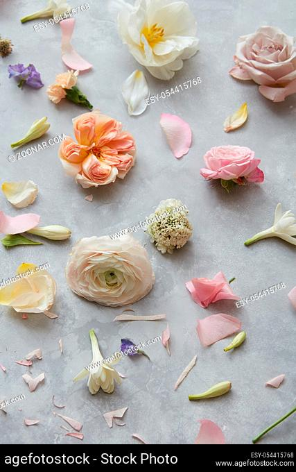 Background with flower composition. Spring greeting card. Top view