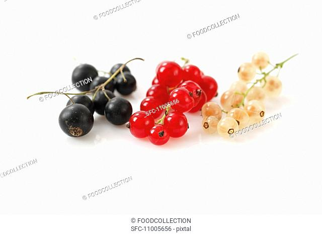 Blackcurrants, redcurrants and whitecurrants