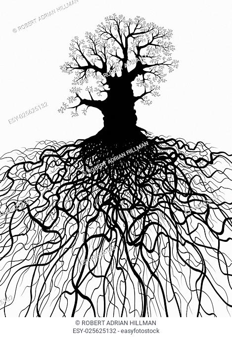 Editable vector illustration of a leafless oak tree with root system