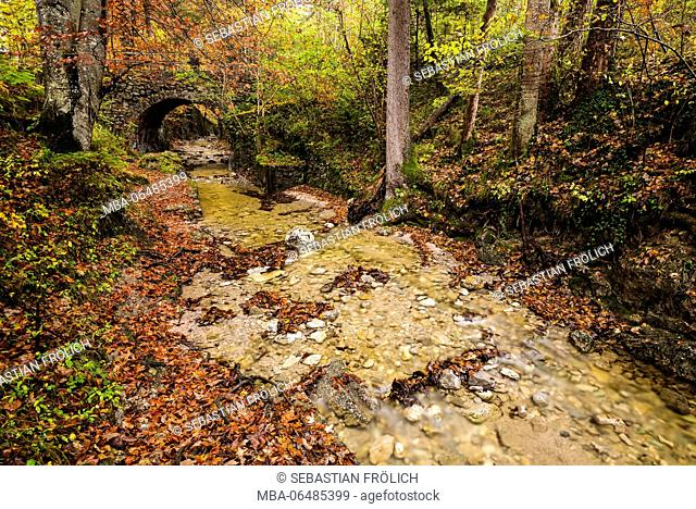 Stream course with old stone bridge in beech forest