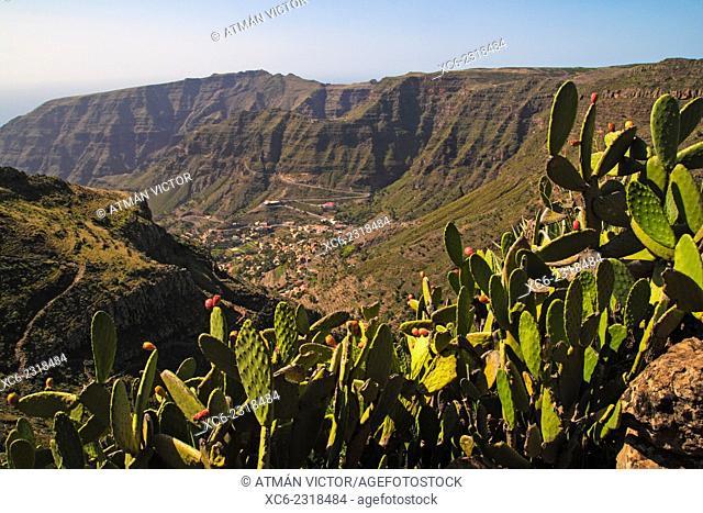 La Vizcaina-Valle Gran Rey path. La Gomera island