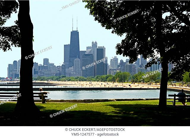 Chicago's North Avenue Beach framed my park trees  View from Lakefront Trail