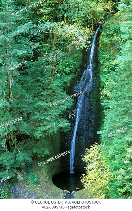 Loowit Falls on Eagle Creek Trail, Columbia River Gorge National Scenic Area, Mt Hood National Forest, Oregon