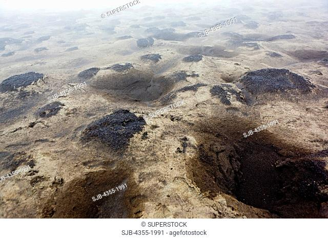 Ash covered ground near the summit of The Eyjafjallajokull Volcano in Iceland one year after the eruption. Lava broke through the Gigjokull Glacier causing...