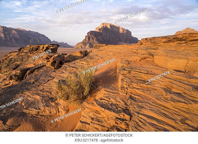 Landschaft mit Felsen in der Wüste Wadi Rum, Jordanien, Asien   landscape with rocks in the desert Wadi Rum, Jordan, Asia