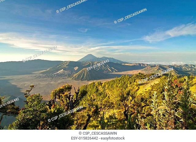Bromo volcano at sunrise, Tengger Semeru National Park, East Java, Indonesia