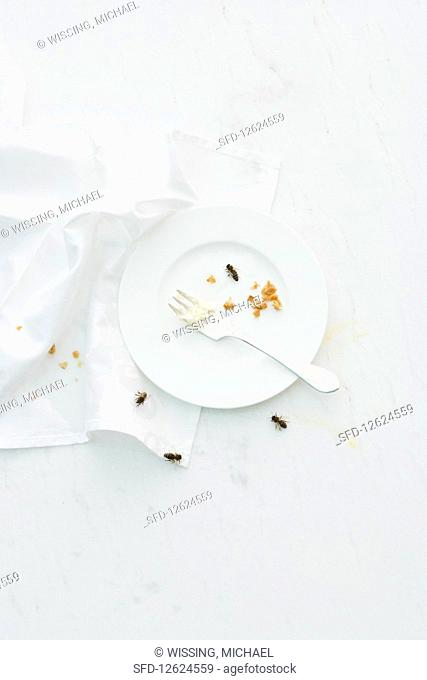 Crumbs on a cake plate