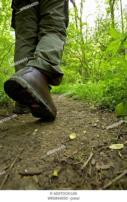 Hiking, Boot, Spring, Great Smoky Mountains National Park, TN, USA