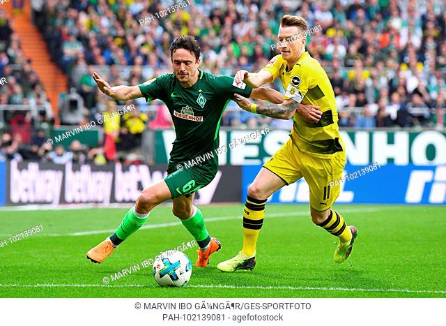 Thomas Delaney (Werder Bremen, l.) Versus Marco Reus (BVB, r.). GES / Football / 1st Bundesliga: Werder Bremen - Borussia Dortmund, 29.04