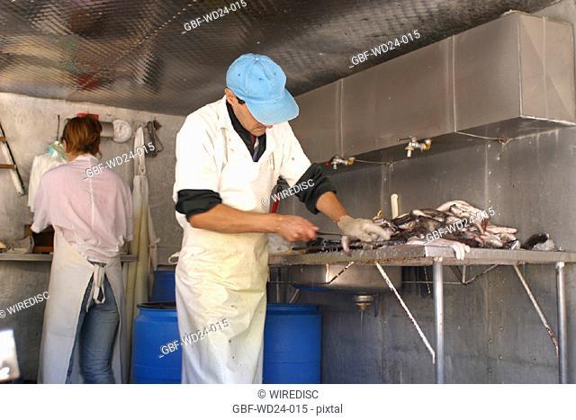 People, man, fishmonger