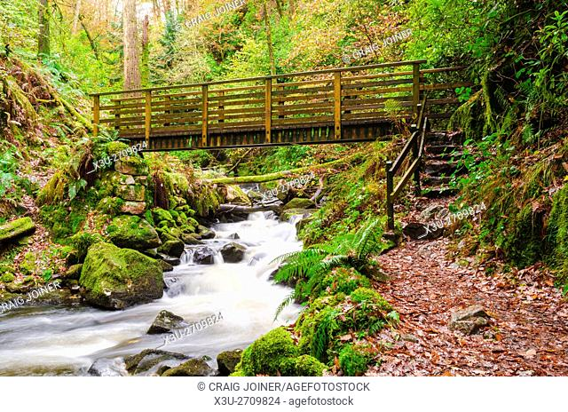 Footbrige over Birker Beck in the Stanley Ghyll gorge in the Lake District, Eskdale, Cumbria, England