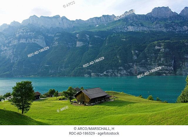 Lake Walen, Murg, St Gallen, Switzerland, Walensee