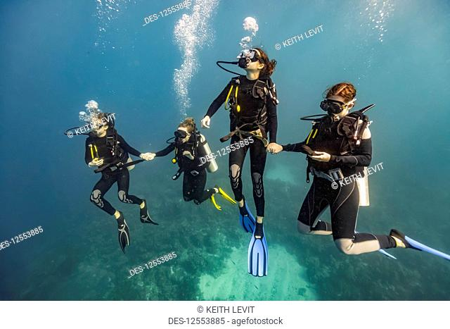 Scuba divers in Roatan Marine Park, West End Wall dive site; Roatan, Honduras