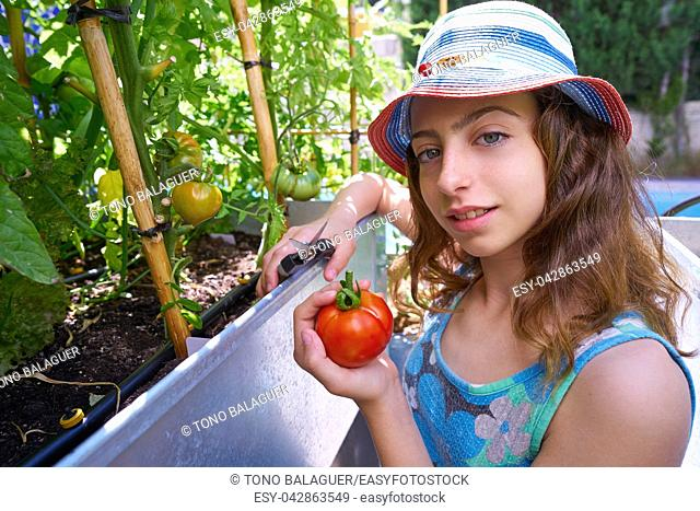 Girl harvesting tomatoes in a table orchard raised bed