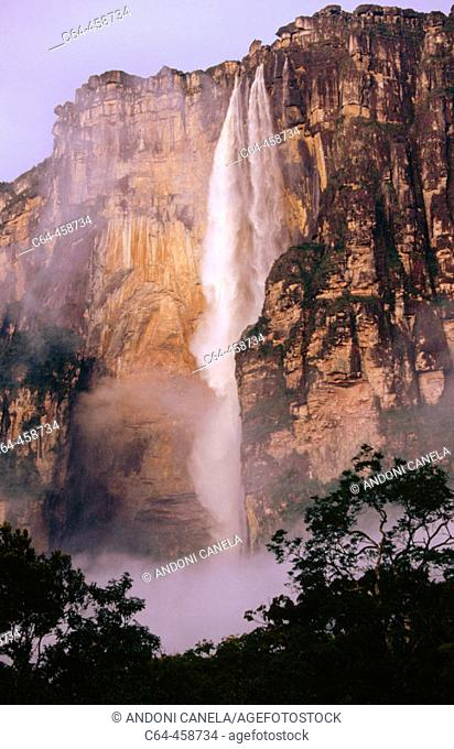 Angel Falls (aka Salto Ángel), Canaima National Park. Venezuela